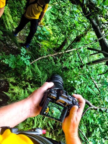 Fotografering Isberg tur